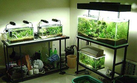 249Металлогалогеновые лампы для аквариума