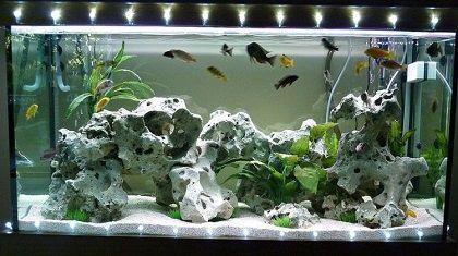 Светодиодные светильники для аквариума