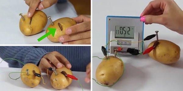 Как получить электричество из картошки